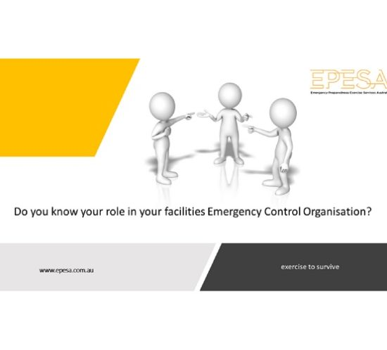 This image shows three figures pointing to each other, not knowing who is playing what role in an emergency control organisation.